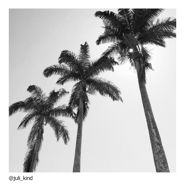 juli_kind