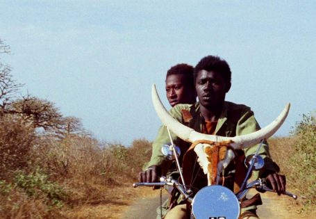 A viagem da hiena (800)